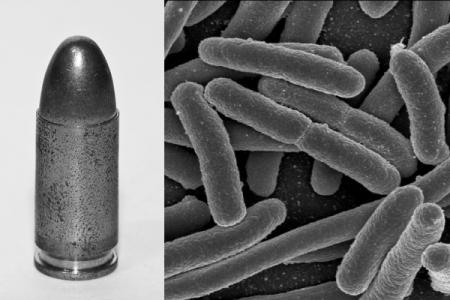 Antibacterial-Silver