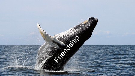 breach of friendship