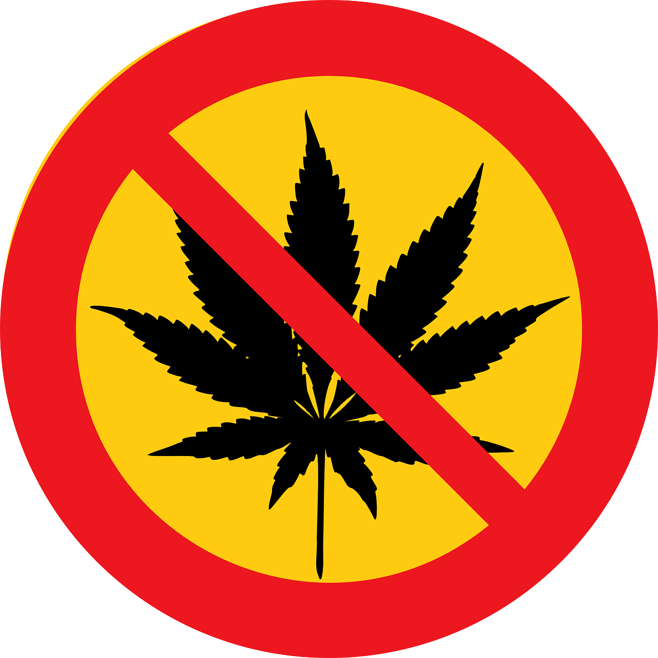 reasons to oppose the legalization of recreational drugs sixteen reasons to oppose the legalization of recreational drugs cannabis 151920 1280